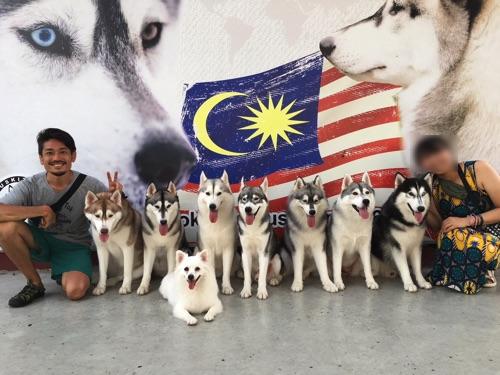 【画像】HUSKITORY 犬との集合写真
