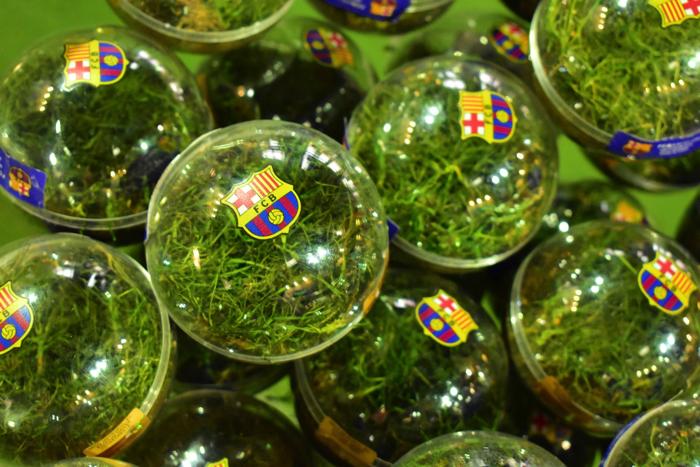 【画像】バルセロナ カンプ・ノウ・スタジアム 芝のおみやげ