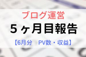 ブログ運営5ヶ月目報告【6月分PV数、収益】