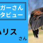 ブロガーインタビュー【ハリスさん】